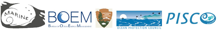 Pacific Rocky Intertidal Monitoring Program banner image